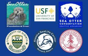 2020 sea otter grant awards