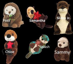otters for adoption